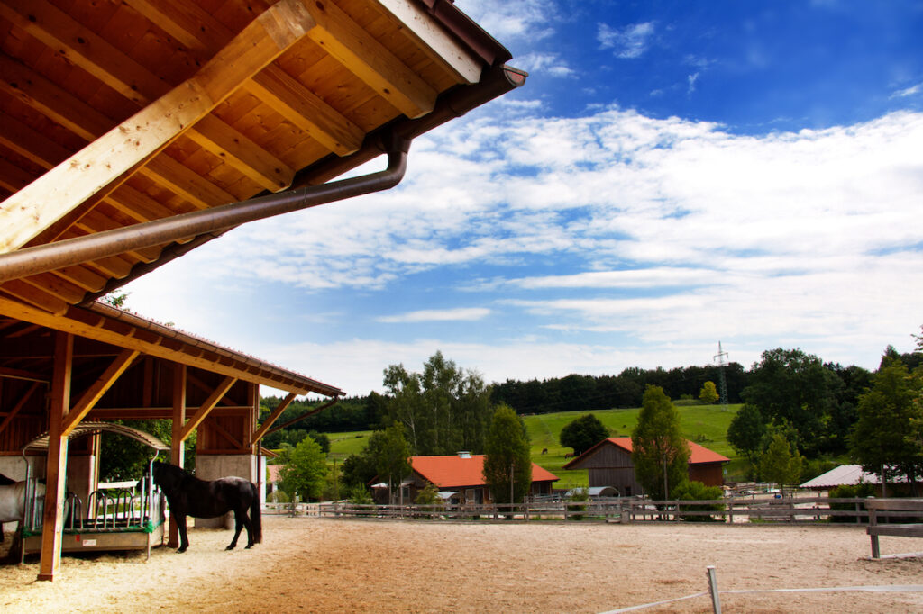 Gut Wangerltal - Exklusiver Reiterhof bei München